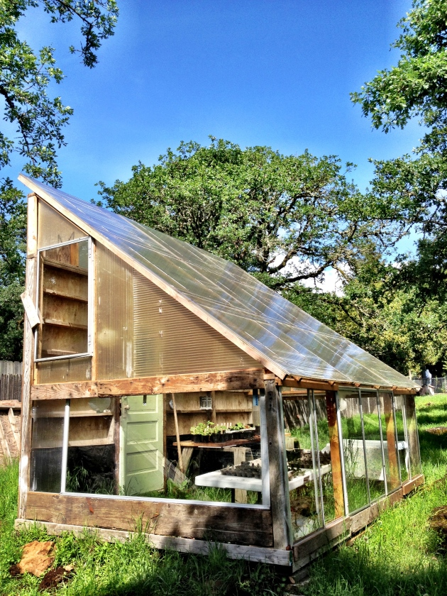 Free greenhouse plans wood plans diy small workbench plans cudweedemksa - How to build a wooden greenhouse ...